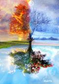Les 4 saisons Les 4 éléments